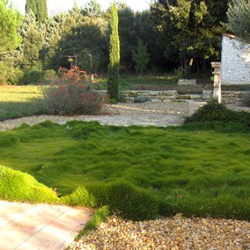 Jardins jardin paysagistes paysagiste architecte for Paysagiste architecte jardin